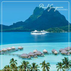 Avec Paul Gauguin 5*, naviguez de lagon en lagon à la découverte des plus belles îles de Polynésie. Profitez de 500 € offerts par cabine ! Tahiti, Paul Gauguin, Best Cruise, Cruise Vacation, Vacation Deals, Bora Bora Cruise, Luxury Cruise Lines, All Inclusive Cruises, Christmas Cruises