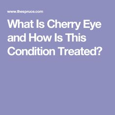 What Is Cherry Eye and How Is This Condition Treated?