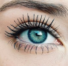 one of my favorite things to do with the eyes is a bright lid with all of the focus on lashes