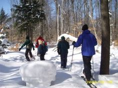 Learn about snowshoeing adventures in Pure Michigan from a Tahquamenon Falls State Park naturalist on Pure Michigan Connect.