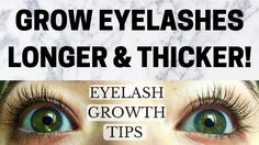 YOUTUBE VIDEO: Grow Eyelashes Longer & Thicker! Easy Eyelash Growth Tips and Tricks!! Long Thick Eyelashes, How To Grow Eyelashes, Longer Eyelashes, Best Eyelash Growth Serum, Natural Eyelash Growth, Eye Makeup, Easy, Tips, Visit Website