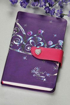 My Beautiful Princess Bible NLT