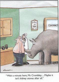 Kidney stones?