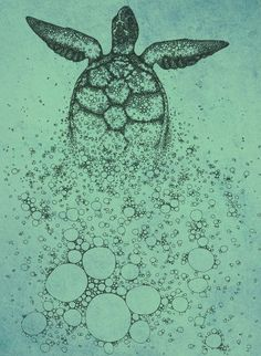 Need a sea turtle too. I like the idea of one partially hidden by bubbles.