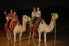 http://www.arabiandesertdubai.com/evening-desert-safari-deals-dubai/ #desertsafarideals