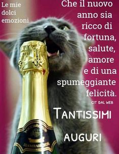 Messages, Happy New Year, My Friend, Merry Christmas, Funny, Mamma, Phrases In Italian, Pictures, Xmas