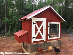 This step by step diy project is about 4x8 chicken coop with run plans. I have designed this chicken coop with run so you can add it to your backyard and harvest fresh eggs every day. In addition, this wood chicken coop has a nice design so you can integrate it easily with the rest of the constructions on your property.