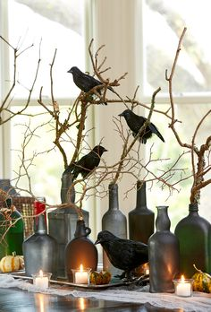 """You'll """"nevermore"""" have a boring party with this centerpiece that nods to Edgar Allen Poe's famous poem. Arrange a cluster of old bottles with branches inside. To give them a distressed look, spray-pa Comida De Halloween Ideas, Casa Halloween, Halloween Dinner, Halloween Trees, Halloween Home Decor, Halloween Projects, Halloween 2019, Diy Halloween Decorations, Holidays Halloween"""