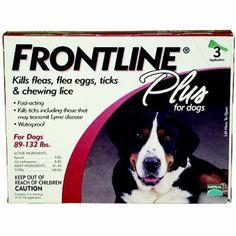 Frontline Plus Flea Tick Control Flea Tick Cat Fleas Frontline For Cats Frontline Plus For Cats