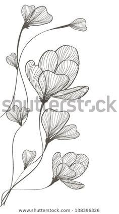 Flower Drawing Tutorials, Flower Line Drawings, Botanical Line Drawing, Flower Sketches, Floral Drawing, Botanical Drawings, Art Drawings Sketches, Easy Drawings, Flower Art Drawing