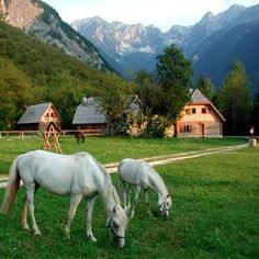 #MyEscapeCompetition: Wonderful mountains at Pristava Lepena, Near Bovec, Soca Valley, Slovenia Hotel Reviews | i-escape.com