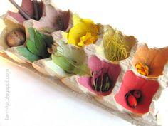 осенний сортер для изучения цветов