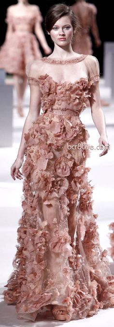 not crazy about the mesh at the top, but this is breath-taking!    Elie Saab Haute Couture Spring Summer 2011 Collection