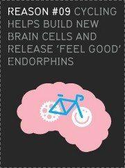 brain on bike