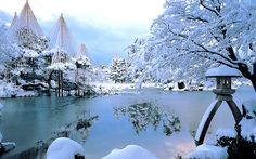 Kenrokuen, Kanazawa, Japan. The strings over the trees help prevent heavy snows from damaging said trees.