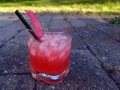 Rabarber Gin & Tonic - Piskeriset på eventyrPiskeriset på eventyr