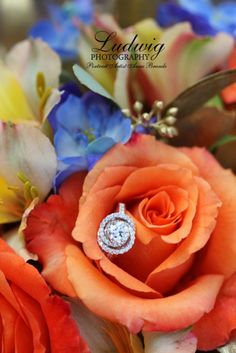 Ring by Alexander's Fine Jewelry. Photography by Ludwig Photography in downtown Laramie, WY