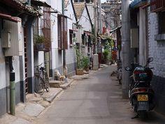 Living in Beijing's hutongs