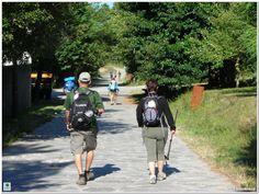 Consejos para los pies en el Camino de Santiago... #trekking #caminar #ampollas