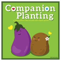 Companion Planting Infographic Poster_2nd Ed_lowres_Luluesque-Wordpress_5x5