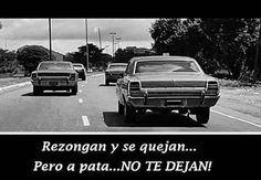 #autos #clasicos #clasico #fierros #pasion_auto_velocidad #fraces #confiables #unicos #inreplasables http://unirazzi.com/ipost/1503416980517335919/?code=BTdNcdBBrNv