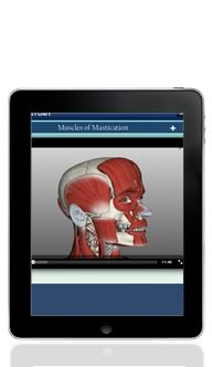 The Dental Professor    App for Dentists  App to view videos of dental procedures and use them for educating patients.