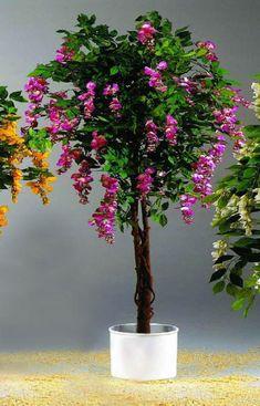 Vásárlás: EUROPALMS Lilaakác ragasztva 180cm magas 82507136 Művirág árak összehasonlítása, EUROPALMS Lilaakác ragasztva 180 cm magas 82507136 boltok Plants, Plant, Planets
