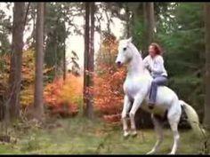Debora und Maroun - Freies Spielen, Ausritt mit Halsring, Springen, Dressur, Zirkuslektionen :o) - YouTube