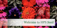 Horticultural Products and Services