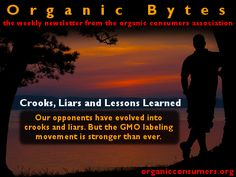Organic Bytes Newsletter #401: 10/31/2013 Crooks, Liars and Lessons Learned