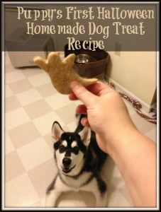 Puppy's First Halloween: Homemade Dog Treat Recipe