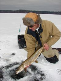 Some great ice fishing tips for Northern Pike. Worth checking out.http://hookitfishit.com/uncategorized/northern-pike-water-wolf/