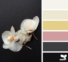 { orchid tones } | fresh hues | color + inspiration