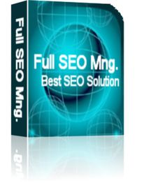 Best SEO Solution combines low SEO package prices with fast, guaranteed and high quality service.