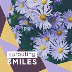 IF THERE'S ONE thing we're good at, it's helping healthy smiles to sprout. Let us help you with yours!