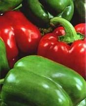 """The California Wonder 300 TMR is a very popular vegetable for the home garden! Glossy deep-green turning red at full maturity, these peppers reach 4 - 4 ½ """" x 3 to 4"""" in diameter. Average: 75 days"""