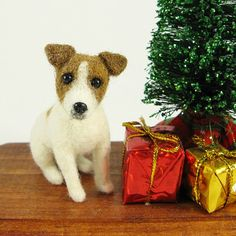 16 Best Russell Mania images | Jack russells, Pets, Doggies