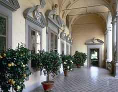 Jardins de la Villa Mansi
