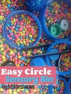 Circle Sensory Bin