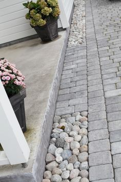 Pebble edging to patio.