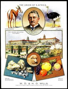 """Wills's Cigarettes """"The British Empire"""" (set of 12 postcard sized cards issued in South Africa Union Of South Africa, Vintage Postcards, Vintage Labels, African History, Vintage Travel Posters, Africa Travel, Postcard Size, Historical Photos, Vintage Advertisements"""