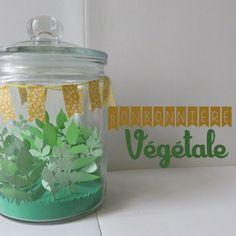 Bonbonnière végétale Une adorable idée pour mettre du vert chez soi quand on ne veut pas de plante!