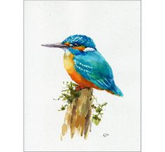 Kingfisher Original unframed watercolor painting on a high quality, acid free paper, made with recycled hemp fabric. Hand painted and signed by the artist Maria Stezhko. This whimsical bird is painted on a beautiful watercolor paper, made with recycled hemp fabric. The paper has a light grayish tone and tiny inclusions of plant particles. Please note that colors may slightly vary depending on your monitor settings. This painting fits perfectly in a standard mat for 8x10 picture Paper…