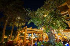 OAK Marbella - OAK Garden & Grill restaurant by Sala in Puerto Banus, Marbella Spain www.oakgardenandgrill.com
