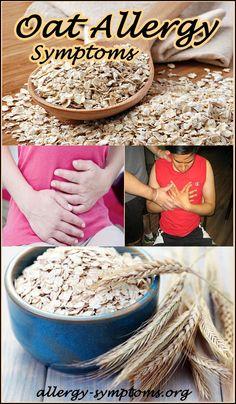 Oat Allergy Symptoms & Diagnosis #oat #oatallergy http://allergy-symptoms.org/oat-allergy/