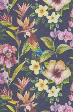 Parrot col.06