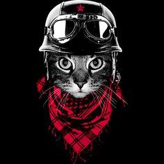 El Gato Aventurero Camiseta Por Clingcling Diseño por los seres humanos