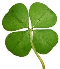 Happy St. Patricks Day to all my Pinterest friends.
