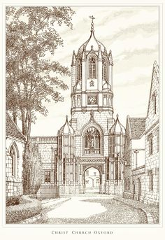 University and College prints, UK. Ideal gifts for graduation or anniversaries. From original pen and ink drawings by Artist Peter Shaw. Christ Church Oxford, Figure Drawing Models, Ink Pen Drawings, Graduation Gifts, Line Drawing, University, College, Prints, Art