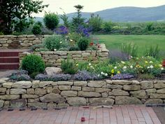 Remodeling and renovation of modern garden design with modern planting Photo album dry stone walls … Garden Stairs, Terrace Garden, Garden Paths, Modern Garden Design, Landscape Design, Landscape Architecture, Modern Planting, Landscaping On A Hill, Dry Stone